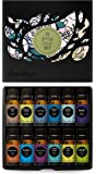 Intro to Essential Oils Sets by Edens Garden 100% Certified Pure Therapeutic Grade GC/MS Tested (12 Synergy Blends)