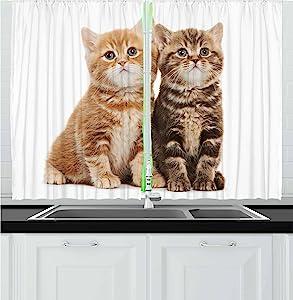 "Lunarable Cute Kitchen Curtains, Two British Shorthair Kitten Cat Furry Feline Animals Adorable Domestic Pets, Window Drapes 2 Panel Set for Kitchen Cafe Decor, 55"" X 39"", Pale Brown"