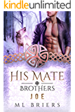 His Mate- Brothers- Joe- Book Two of Adrian and Leo