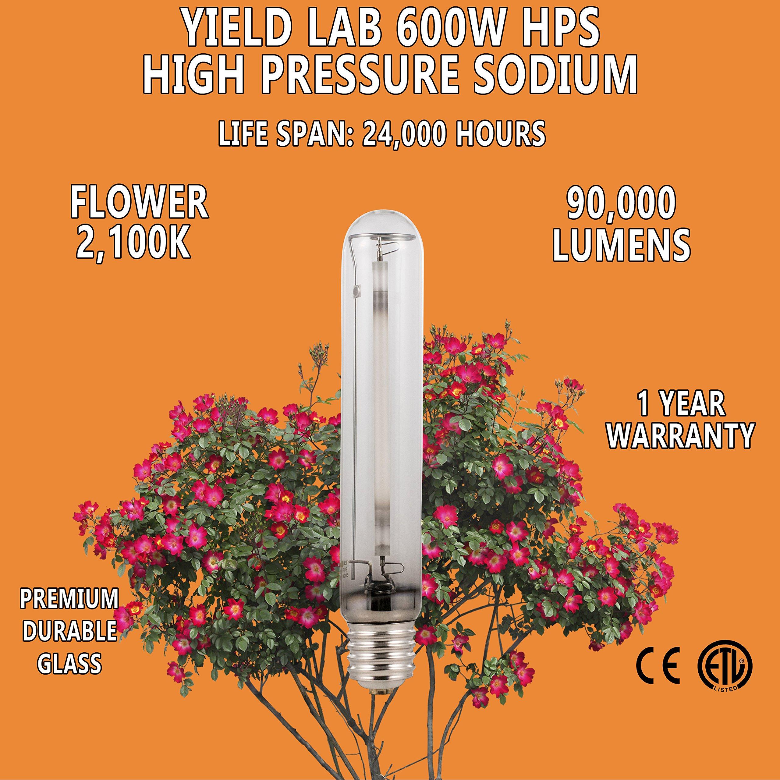 Yield Lab 600w High Pressure Sodium (HPS) Digital HID Grow Light Bulb (2100K) – 3 Bulbs – Hydroponic, Aeroponic, Horticulture Growing Equipment by Yield Lab (Image #4)