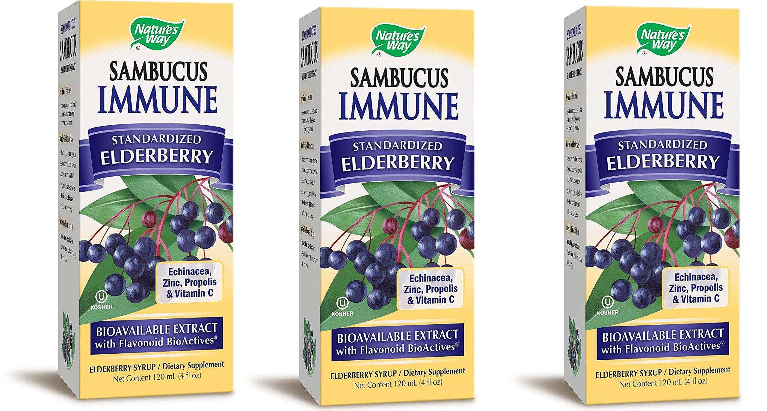 Natures Way Sambucus Black Elderberry Immune Syrup, 4 Ounce - 3 per case.