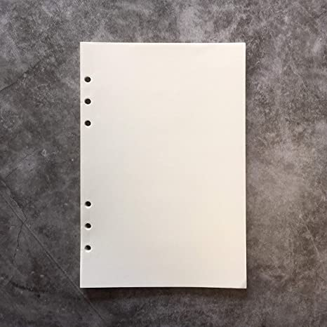 Amazon.com : Blank Refill Paper for 8.5 inch A5 6-Holes ...