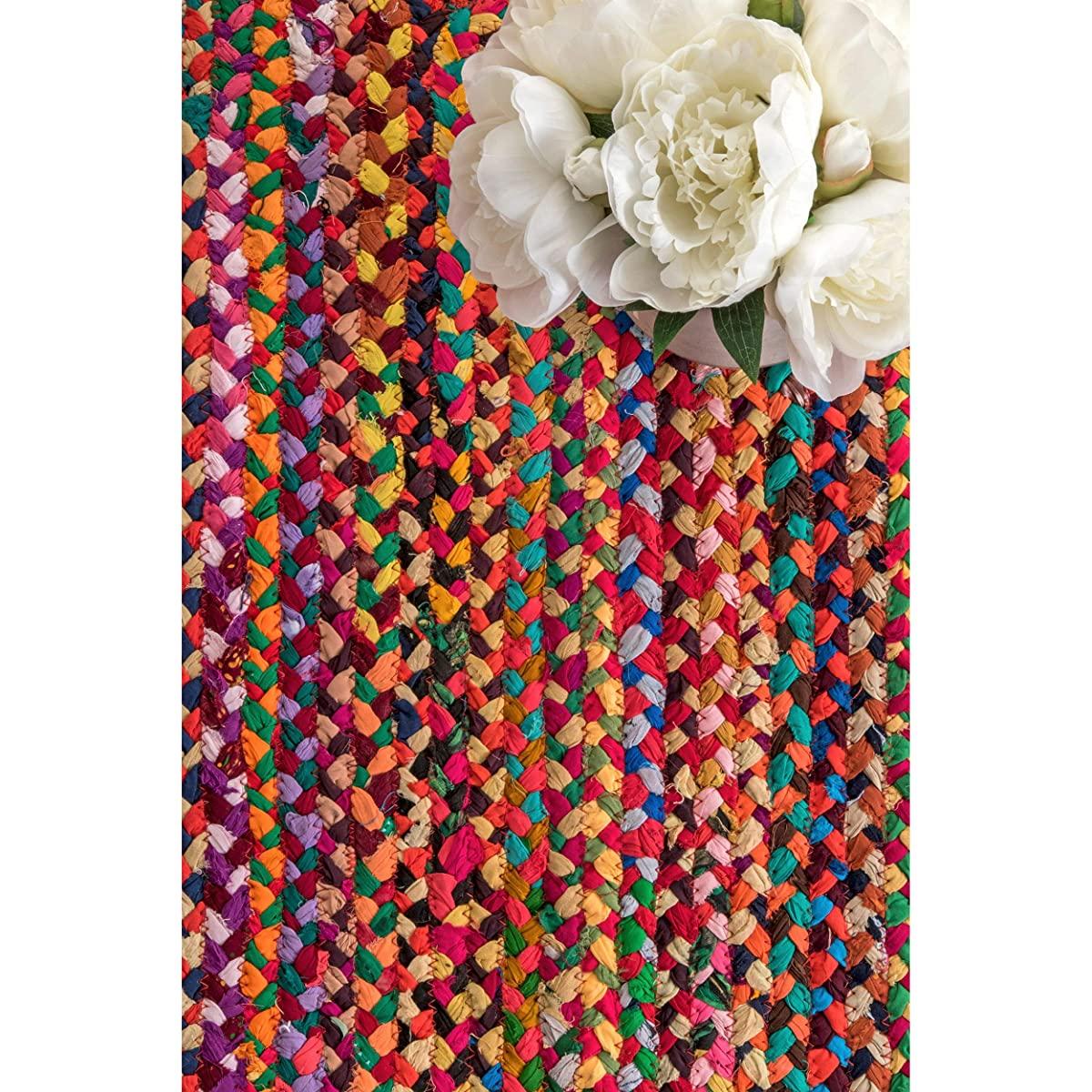 nuLOOM Hand Braided Bohemian Colorful Cotton Area Rug, Multi, 9 x 12