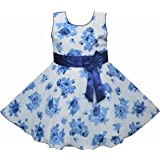 Twinkle Star Baby Girls Fairy Frock Dresses for Birthday Party & Festivals Wear (1 Month - 9 Years)