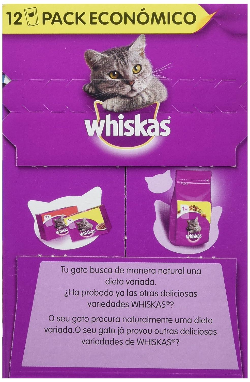 Multipack de 12 bolsitas de 100g de selección de aves para gatos adultos | [Pack de 4]: Amazon.es: Productos para mascotas