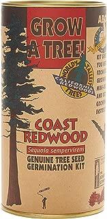 product image for Coast Redwood   Tree Seed Grow Kit   The Jonsteen Company