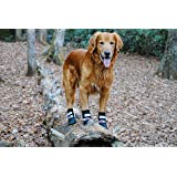 All Weather Neoprene Paw Protector Dog Boots with Reflective Straps in 5 Sizes!