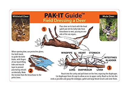 amazon com pak it guide to field dressing a deer hunting fieldimage unavailable image not available for color pak it guide to field dressing a deer