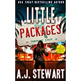 Little Packages: A Florida Mystery Novella (Danielle Castle Mysteries Book 1)