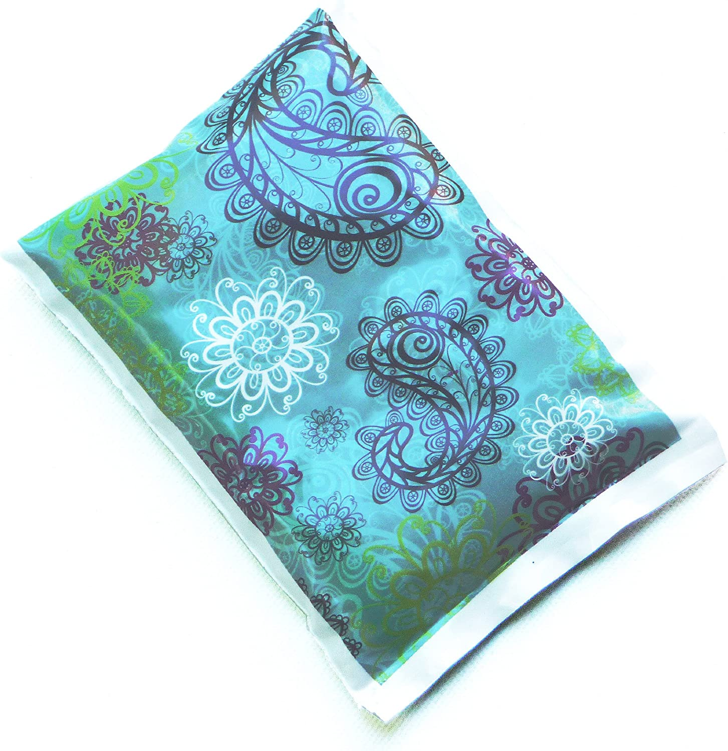 Laptop Lunches Bento Cool Pack, Paisley, Aqua, Pack of 1