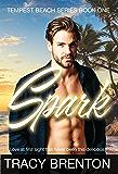 Spark: Tempest Beach Book One