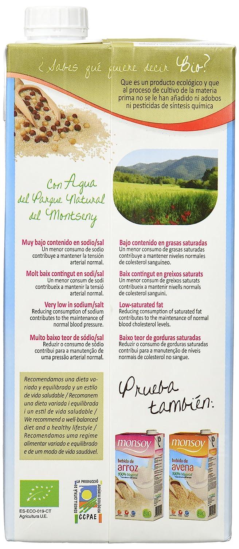 MONSOY Bebida de Arroz con Avellanas Ecologica 1L [caja de 4 x 1L]: Amazon.es: Alimentación y bebidas