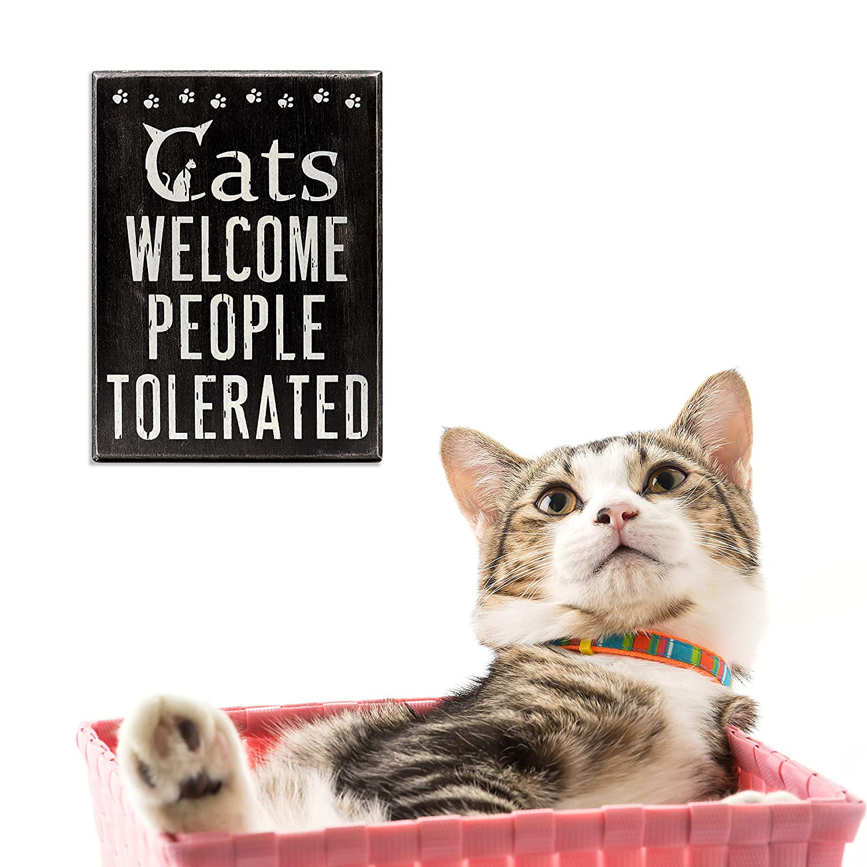 Amazon.com: JennyGems - Señal de bienvenida para gatos ...