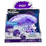 Zoomer 6031228 Hedgiez, Dizzy, Interactive Hedgehog with Lights, Sounds and Sensors, by Spin Master