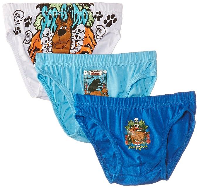 Warner Bros. Scooby Doo Nh3057 - Calzoncillo para niños, color, talla 6/