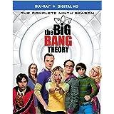 Big Bang Theory: The Complete Ninth Season [Blu-ray]