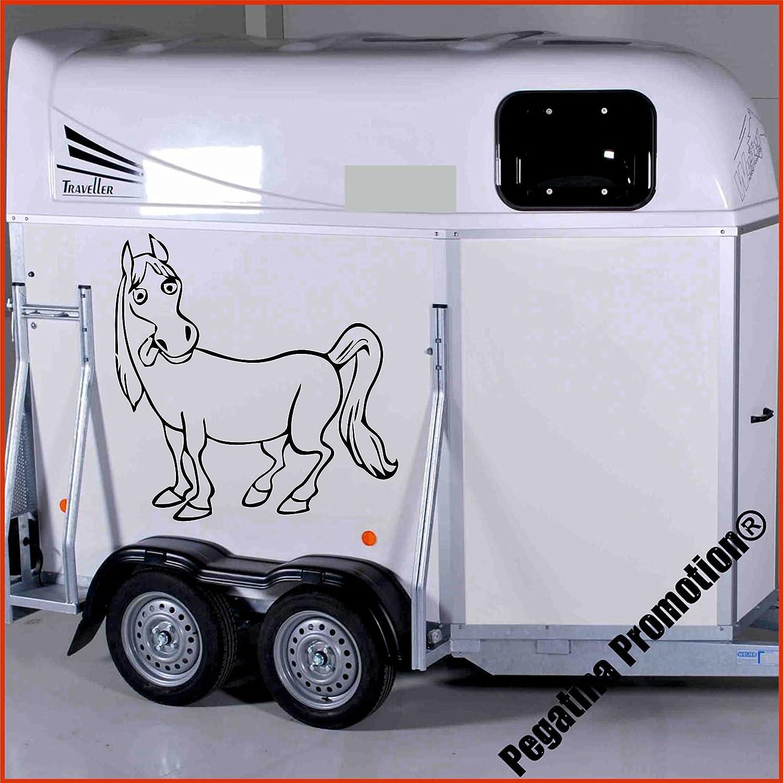 lustiges Pferd Modell 2 Aufkleber Anhänger Pferd Anhänger ca.80x60cm Pegatina Promotion ®