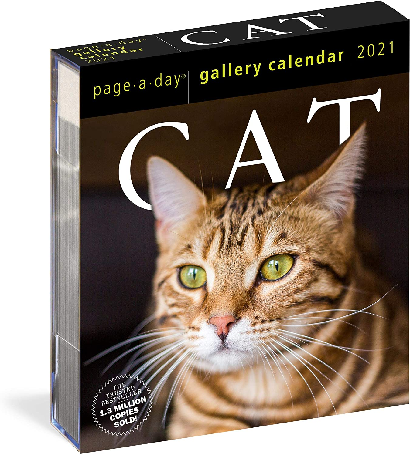 """Cat Page-A-Day Gallery Calendar 2021 [6.25"""" x 7.25"""" Inches]"""