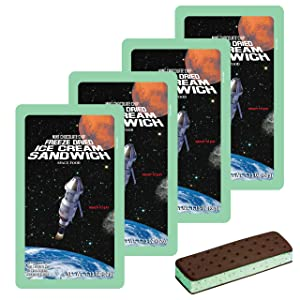LuvyDuvy Freeze-Dried Mint Chocolate Chip Ice Cream Sandwiches - 4 Pack