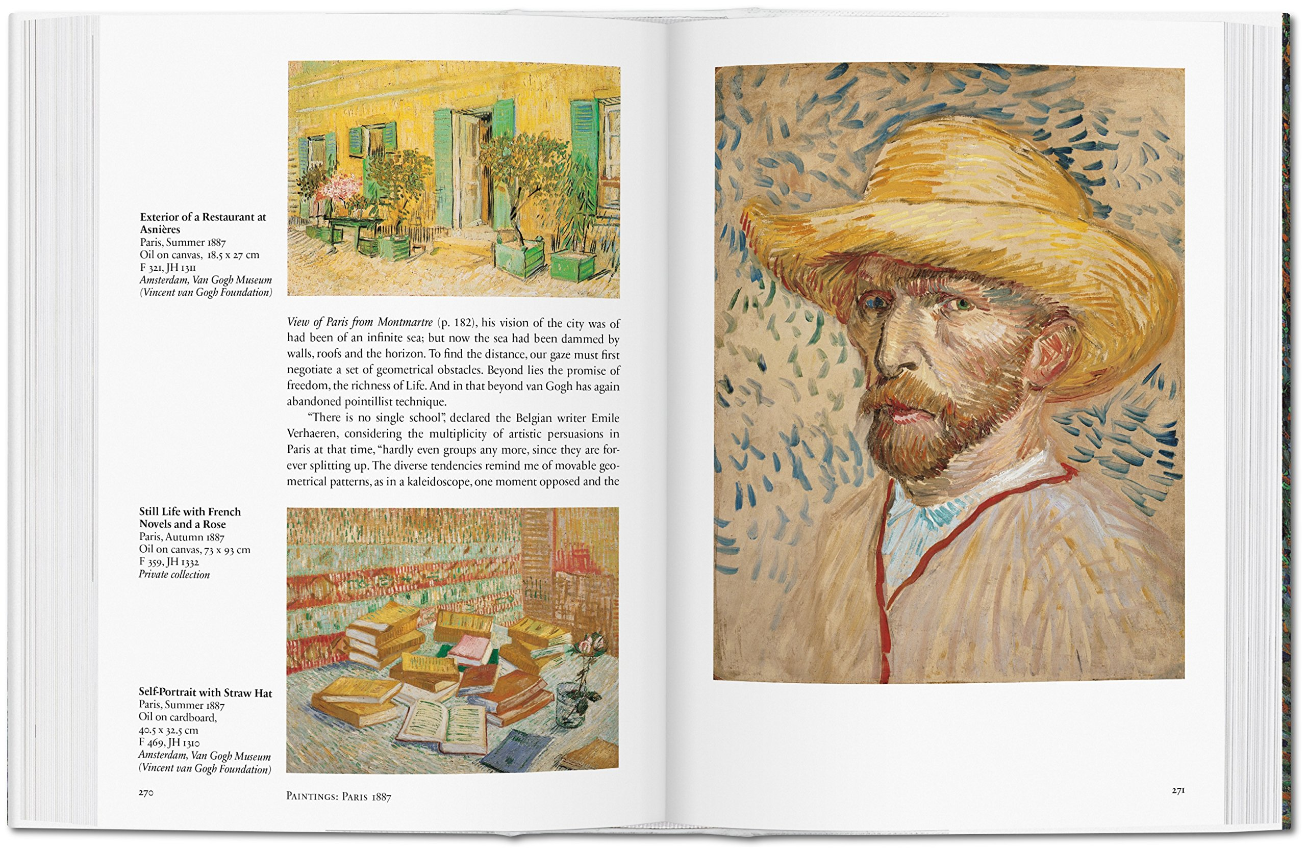 the life of vincent van gough essay Edit this page read in another language lust for life (novel.