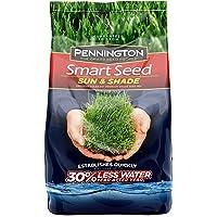 Pennington Smart Seed Sun and Shade Grass Seed, 7 lb