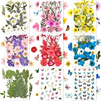 257 Pieces Real Dried Pressed Flowers Leaves and Butterfly Stickers Set Multiple Natural Dry Flowers Daisies Butterfly…