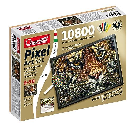 8 opinioni per Quercetti 00803- Chiodini Pixel Art Set 10800 Tigre