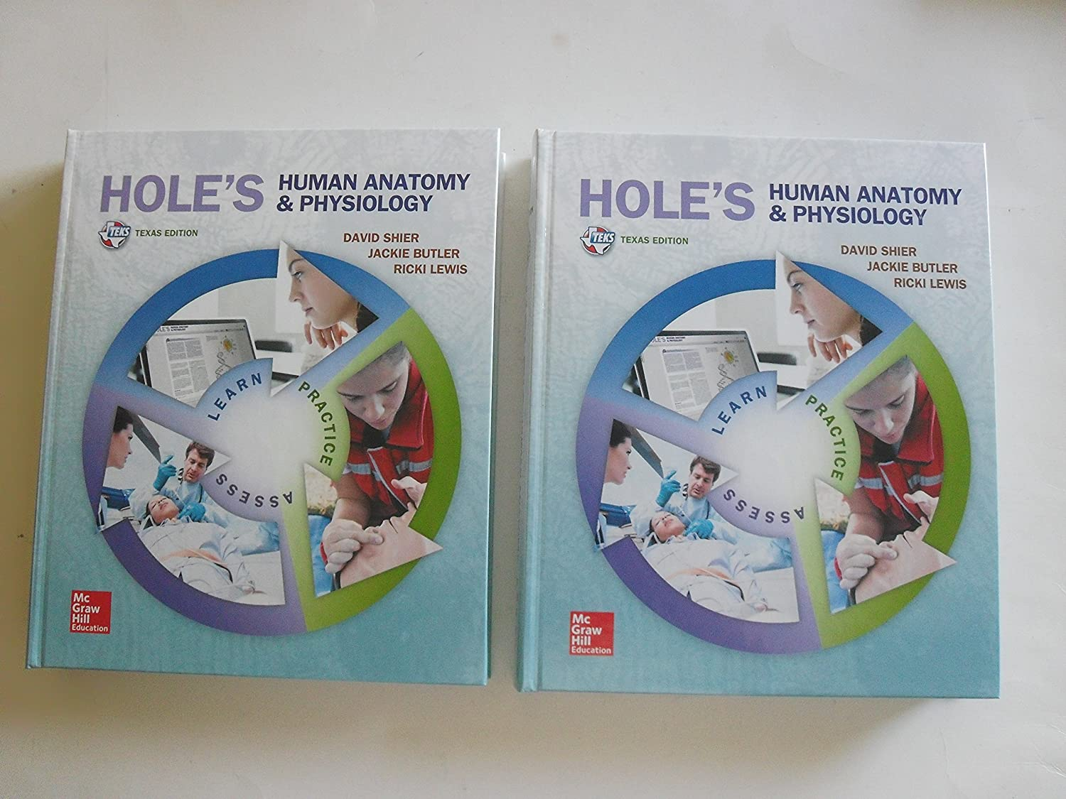Old Fashioned Holes Anatomy And Physiology Embellishment - Anatomy ...