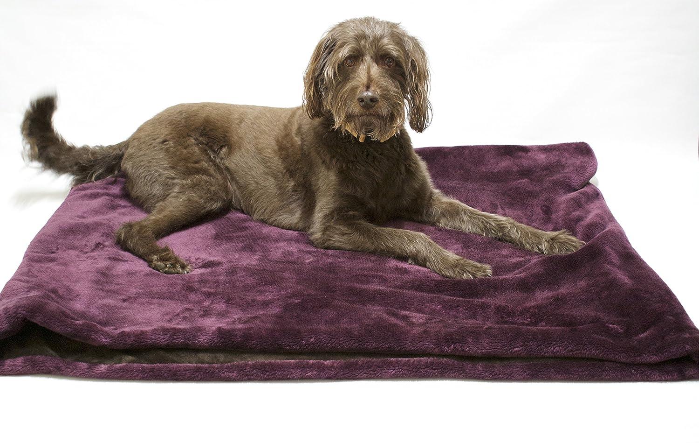 Saco de dormir/cama de mascotas para gatos o perros LolaS y Chocolate: Amazon.es: Productos para mascotas