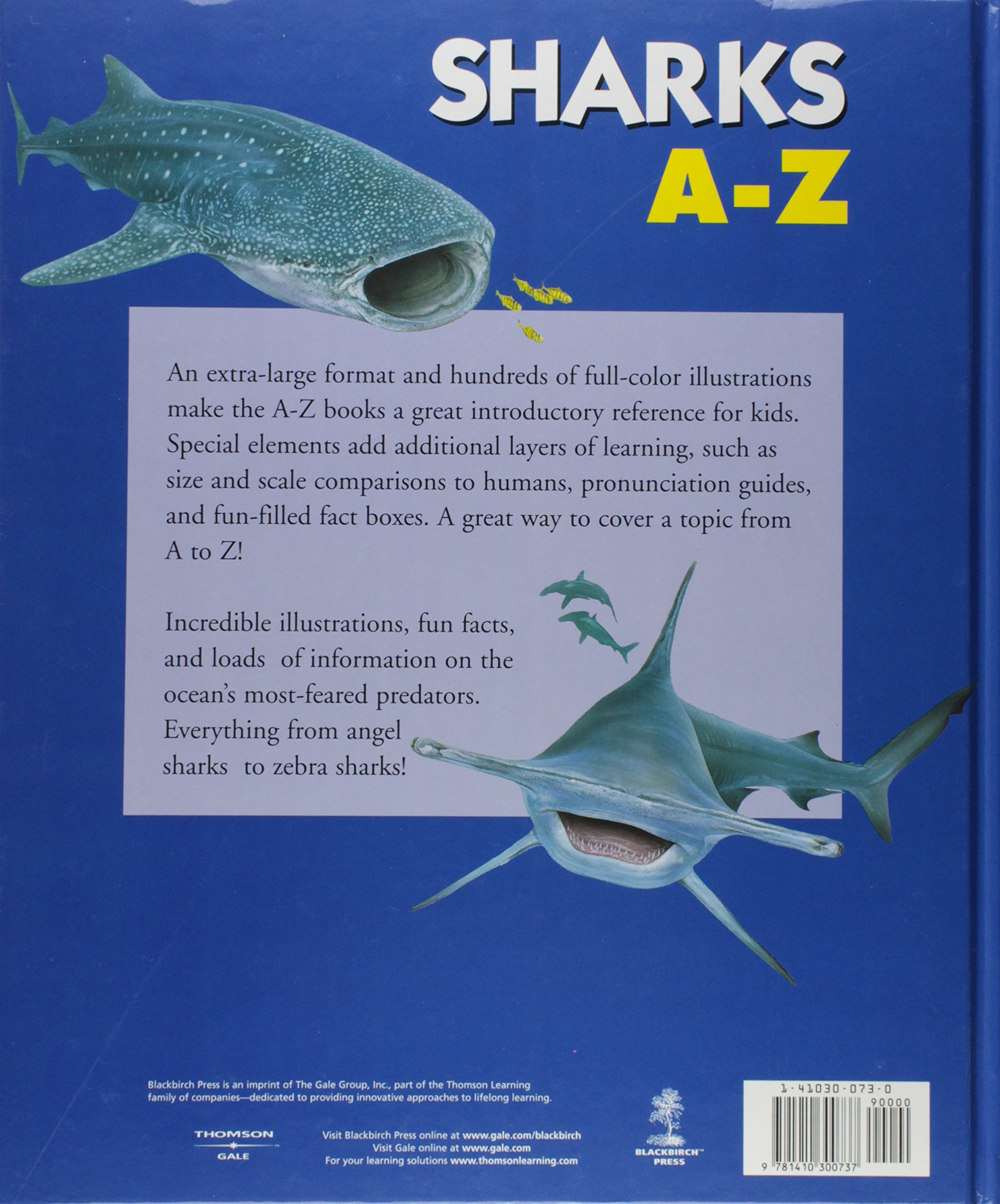a z sharks and other sea creatures andromeda jill bailey