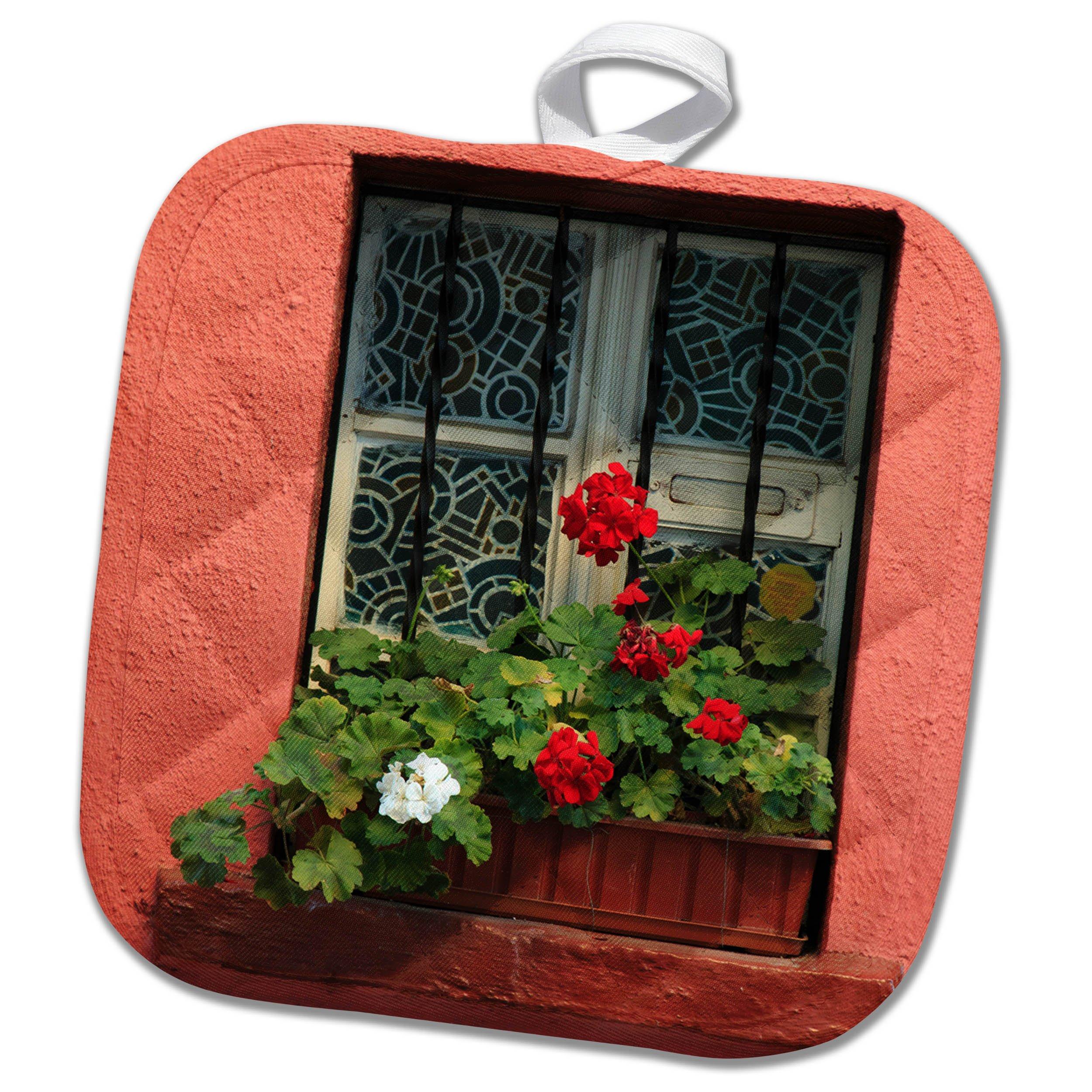 3dRose Danita Delimont - Flowers - Romania, Sighisoara, residential window in old town. Flowers in window - 8x8 Potholder (phl_277872_1)