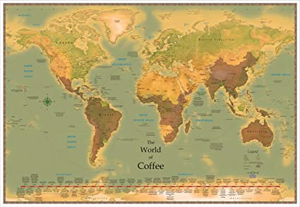 Amazoncom World Coffee Map X Laminated Office Products - 36 x 48 world map