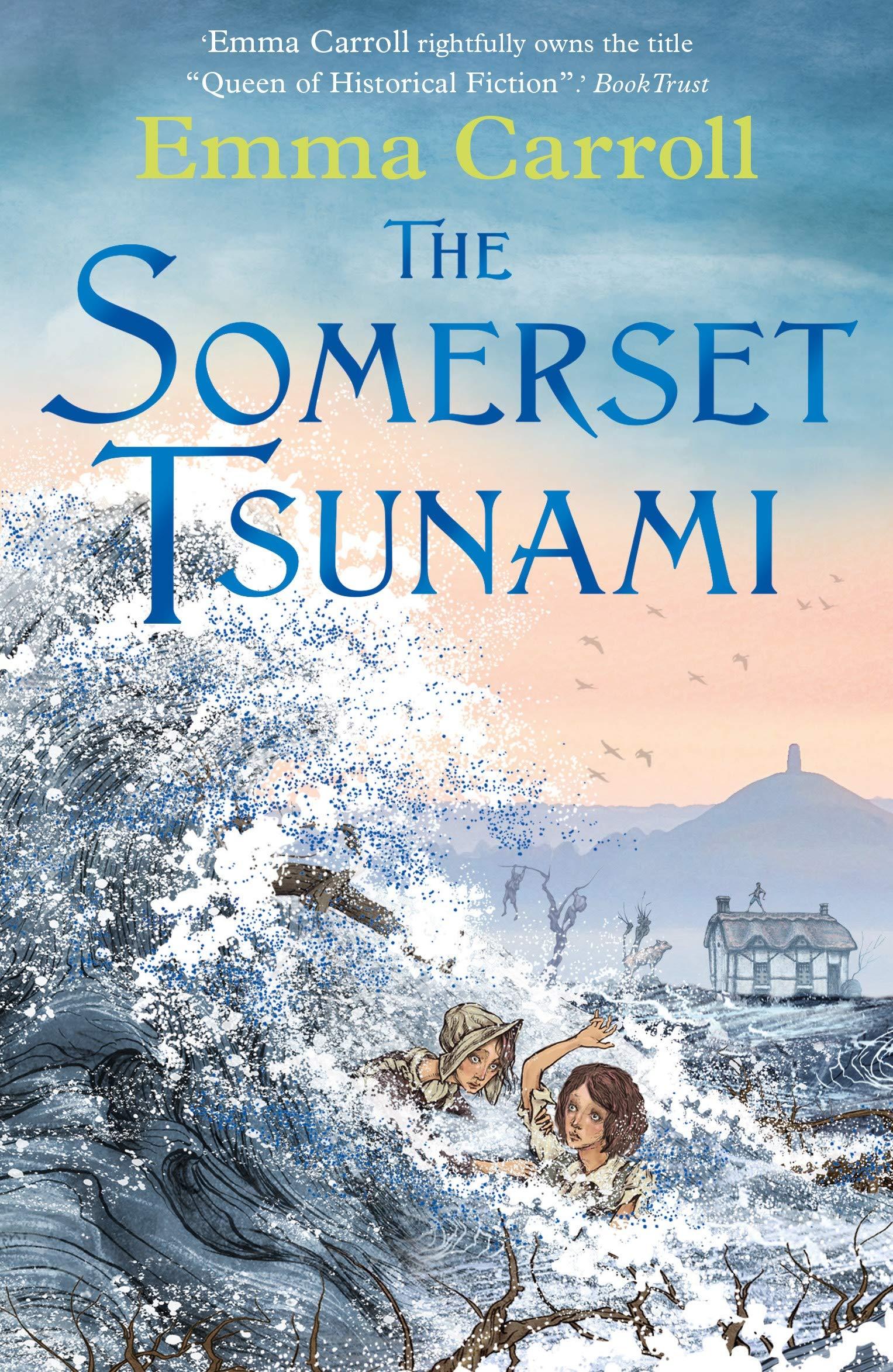 The Somerset Tsunami: Amazon.co.uk: Carroll, Emma: 9780571332816: Books