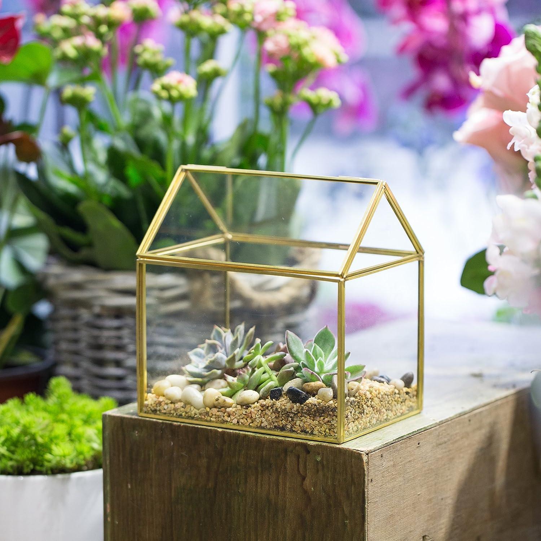 NCYP en forme de maison Close en verre g/éom/étrique Terrariumn de table Plante /à fleurs Moss Fern avec couvercle basculant /¡ black copper transparent