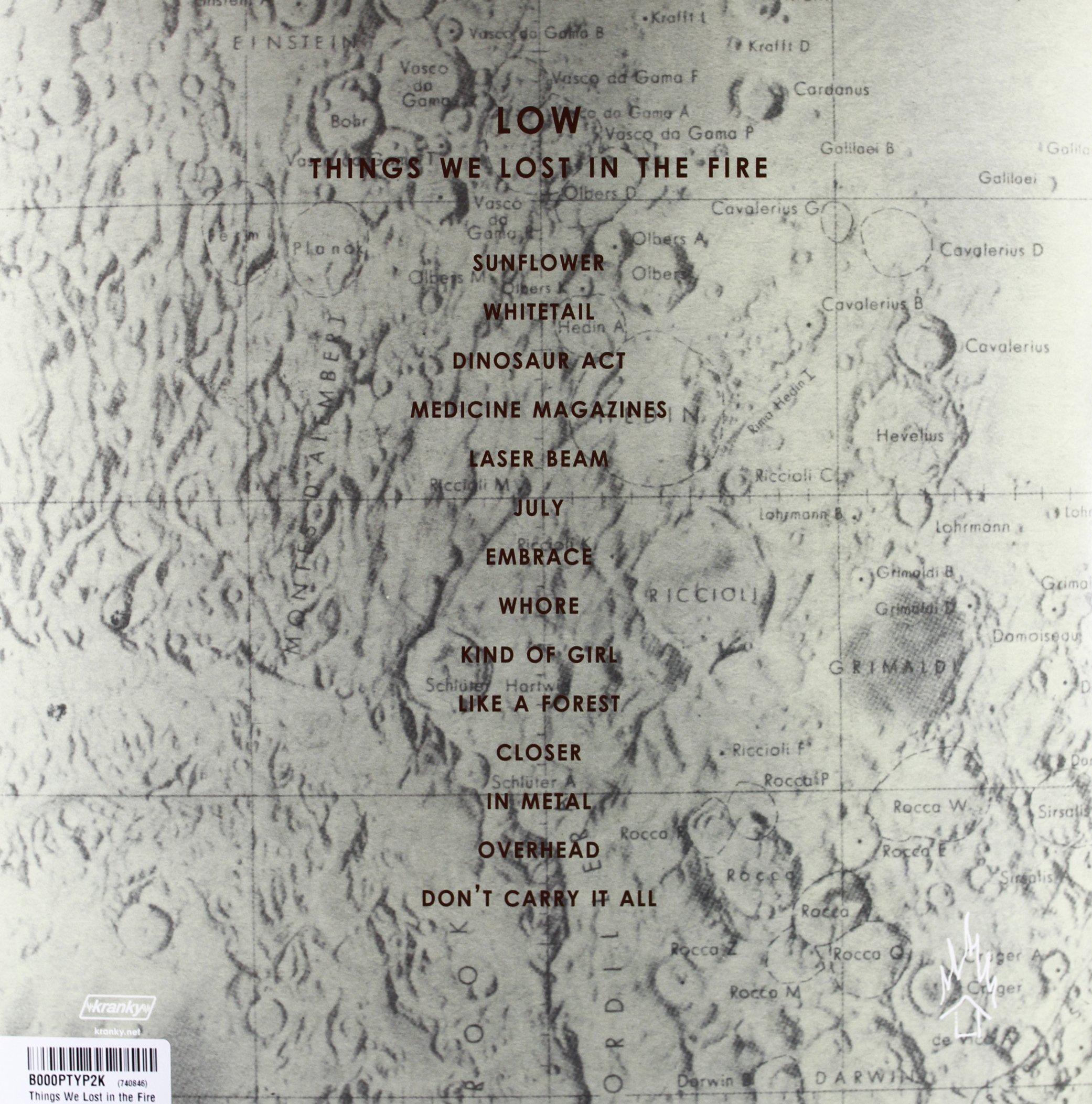 Things We Lost in the Fire [Vinyl] by VINYL