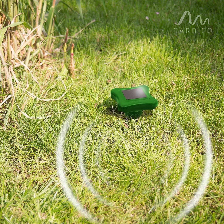 Maulwurfbekämpfung NEU Gardigo Solar Maulwurfabwehr 2er Set Maulwurfschreck
