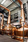 From Barley to Blarney: A Whiskey Lover's Guide