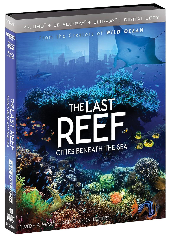Amazon com imax the last reef cities beneath the sea blu ray jamie lee luke cresswell movies tv