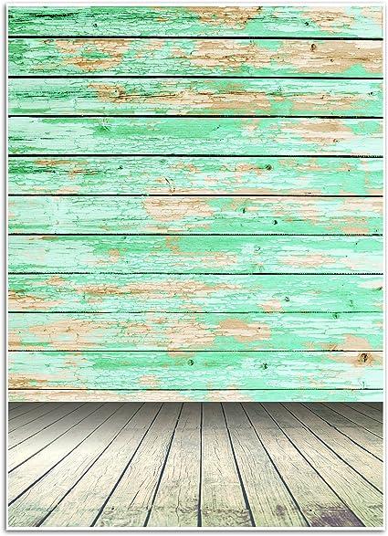 Blue Panda Fotohintergrund Mit Vintage Holzwanddruck Kamera