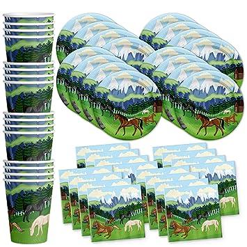 Amazon.com: Juego de servilletas para fiestas de cumpleaños ...