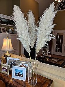 "48"" Tall Natural Beige Pampas Grass-100% Natural Dried Pampas Grass Decor-Boho Wedding-Rustic Room Decor-Luxe Pompous Grass-Rustic Wedding Decorations (3 Stems)"