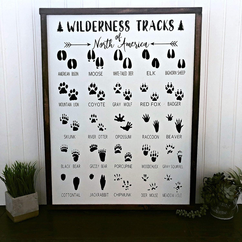 Amazon Com Sun81814 Animal Footprints Sign Animal Tracks Sign Safari Nursery Decor Animal Bedroom Decor Jungle Bedroom Decor Playroom Sign Zoo Sign Posters Prints