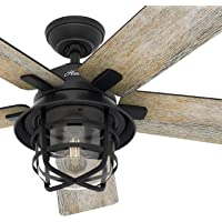 Hunter Fan 54 inch Casual Weathered Zinc Indoor Ceiling Fan with Light Kit and Remote Control (Renewed)