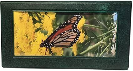 amazon com brown monarch butterfly checkbook cover with check
