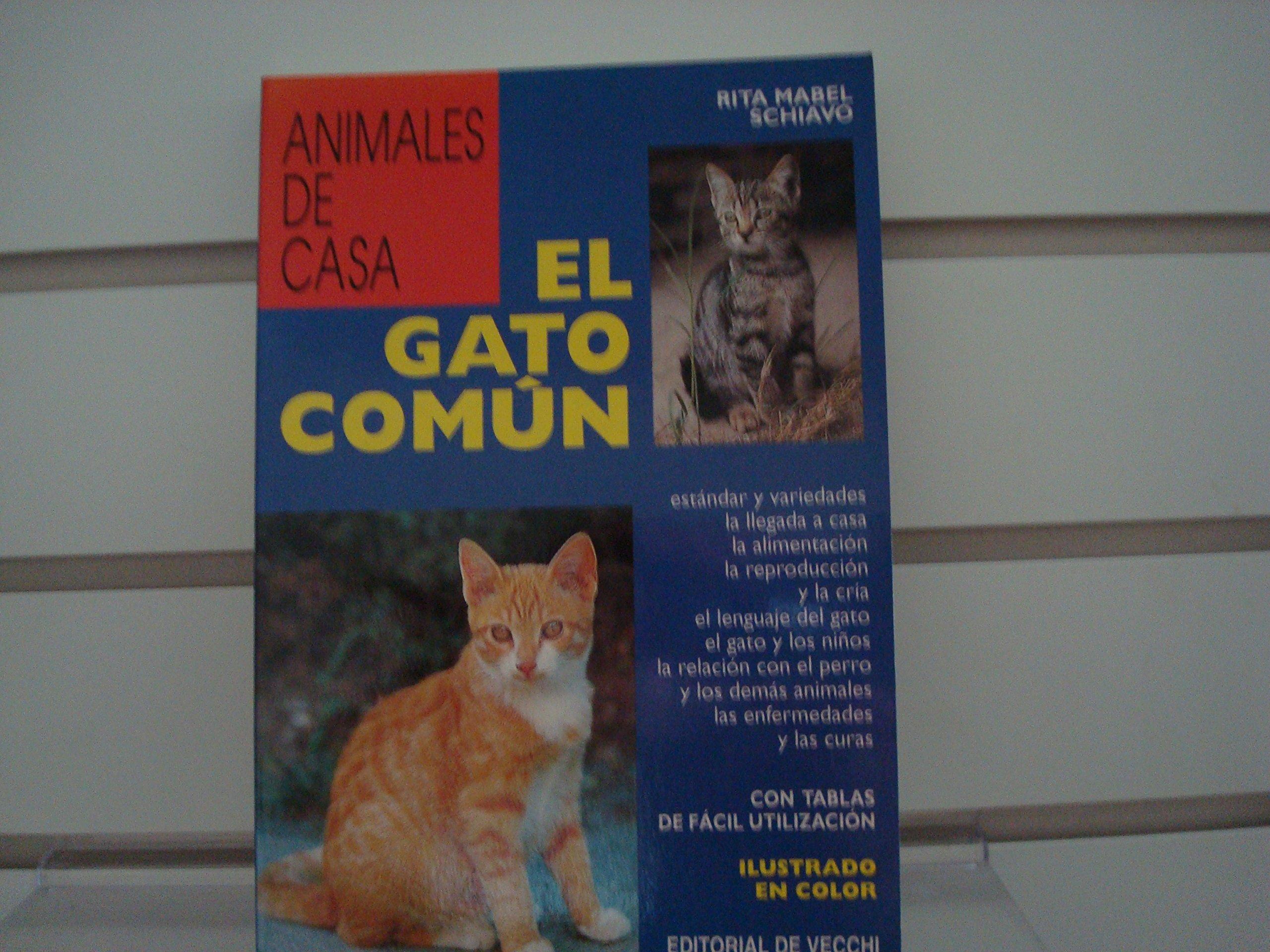Gato Comun, El (Spanish Edition) (Spanish) Paperback – August, 1998