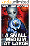 A Small Medium At Large (Division One Book 2)
