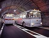 鉄道コレクション 鉄コレ 関電トンネルトロリーバス 300型 ジオラマ用品 (メーカー初回受注限定生産)