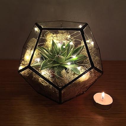 Pentagon Terrarium With Live Succulent Plants And Led Fairy Lights