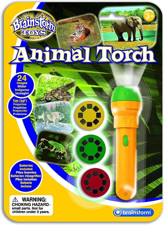 Brainstorm Toys - Linterna proyector (24 Fotos de Animales ...