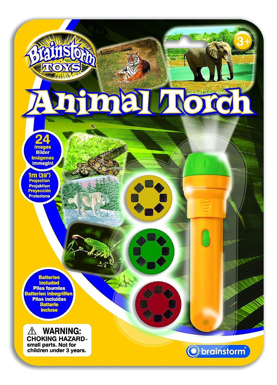 Torcia con proiettore Spaziale Space Torch Gioco educativo Brainstorm Toys